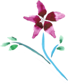 BTM Flower